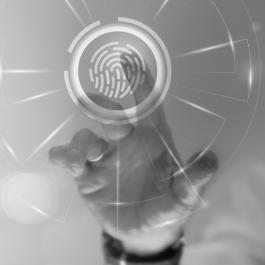 fingerprint reading