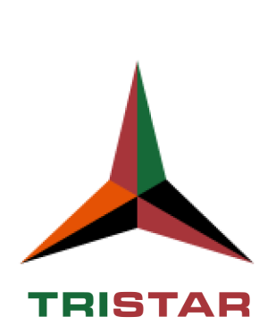 Block Gemini - Tristar Logo